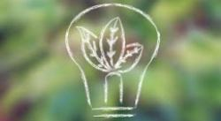 Ideas for Sustainable Startups